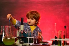 Kid from primary school. What is taught in chemistry. Little children at school lesson. Cheerful smiling little boy. Having fun against blue wall. Experiment royalty free stock photo