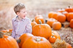 Kid at pumpkin patch Royalty Free Stock Photography