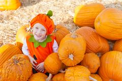 Kid at pumpkin patch Stock Photography
