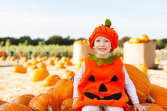 Kid at pumpkin patch Stock Image