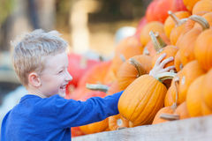 Kid at pumpkin patch Royalty Free Stock Image