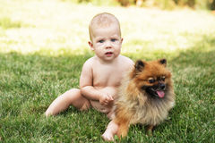 Kid and puppy on the green grass outdoors. Little baby playing with dog Pomeranian spitz on the green grass outdoors. Kid and puppy Stock Photography