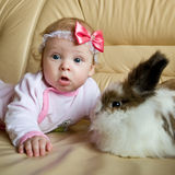 The kid and the rabbit. Baby playing with house bunny Royalty Free Stock Photo