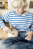 Kid with Rabbit at Home Royalty Free Stock Photo