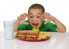 Kid ready to eat a sandwich lunch. Seven year old kid with funny face ready to eat a nutritious meal of whole wheat sandwich, tortilla chips, green apple, and Stock Photography