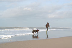 Kid running with dog on beach Royalty Free Stock Image