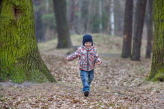 Kid running in the outumn forest. Boy happy in fallen leaves to his mother Stock Photos