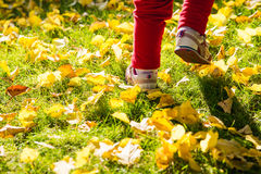 Kid's feet running on the grass Royalty Free Stock Photography