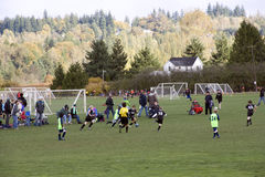 Kid's soccer match. Kid's were playing soccer skillfully in a  match on Sunday at a community park of Snohomish City, Washington State, USA Stock Photography