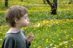Kid's wishes Stock Photos
