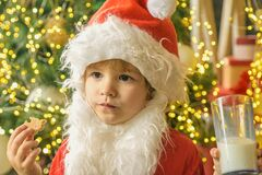 Kid Santa Claus enjoying in served gingerbread cake and milk. Kid Santa Claus takes a cookie on Christmas Eve as a thank