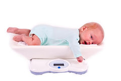 The kid on scales Stock Images