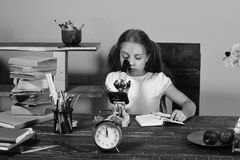 Kid and school supplies on pink background. Girl sits at desk with stationery, clock, books and flowers. Schoolgirl with busy face looks into microscope doing royalty free stock photography