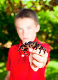 Kid showing crab Royalty Free Stock Photos
