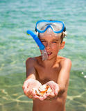 Kid showing shells Stock Image