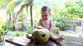 The kid sits on a wooden table against the backdrop of the jungle and laughs when he sees a green coconut in front of him. A scary. Face is carved on a coconut stock footage