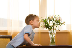 Kid smells a bouquet. Little boy smells a bunch of flowers Royalty Free Stock Photos