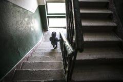 Kid on stairway. Kid walking down a dark stairway Royalty Free Stock Photography