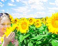 Kid and sunflowers Royalty Free Stock Photos