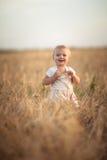Kid toddler on wheat field at sunset, lifestyle Stock Photo