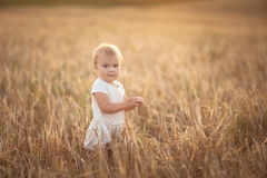 Kid toddler on wheat field at sunset, lifestyle Royalty Free Stock Photo