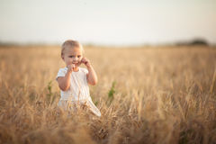 Kid toddler on wheat field at sunset, lifestyle Royalty Free Stock Image