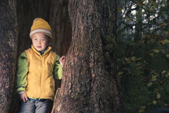 Kid in tree hole Royalty Free Stock Photography