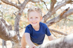 Kid at the tree. Smiling 6-year old boy enjoying summer time in the forest climbing Royalty Free Stock Photography