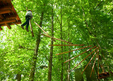 Kid in a treetop adventure park Royalty Free Stock Photos