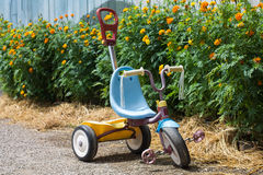 Kid tricycle. Blue kid tricycle in garden stock photo
