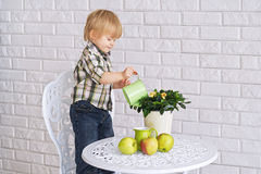 Kid watering a pot flower Royalty Free Stock Photography