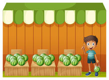 A kid at the watermelon fruitstands Royalty Free Stock Image