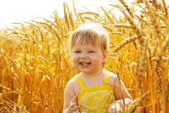 Kid in wheat Royalty Free Stock Image