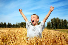 Kid in wheat field Stock Photos