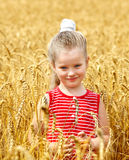 Kid in wheat field. Stock Photo