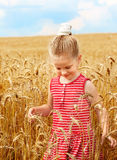 Kid in wheat field. Royalty Free Stock Image