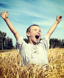 Kid in the Wheat Field Stock Photo
