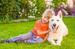 Kid and White Swiss Shepherd dog together on green grass Stock Photography