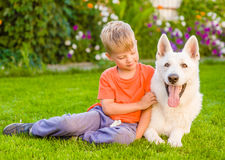 Kid and White Swiss Shepherd dog together on green grass Royalty Free Stock Images