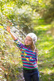 Kid winter girl picking mulberry berries in the forest Royalty Free Stock Images