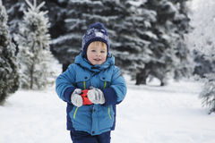 The kid in the winter on walk Stock Images