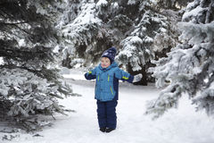 The kid in the winter on walk Royalty Free Stock Image
