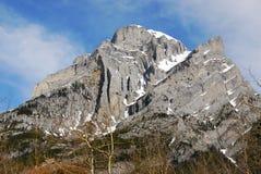 Kidd de montagne photo libre de droits