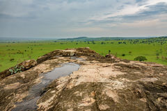 Kidepo nationaal park in Oeganda royalty-vrije stock foto