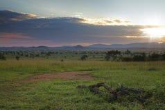 Kidepo National Park. Sunrise in Kidepo Valley National Park, Uganda Stock Images