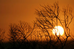kidlda zachód słońca na plaży st. Fotografia Royalty Free