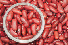 Kidney bean Stock Photos
