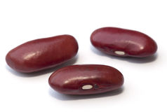 Kidney bean isolated. On the white background Royalty Free Stock Photography