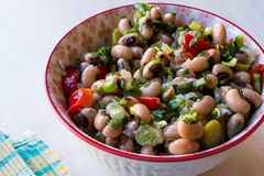 Kidney Bean Salad with Tomatoes, Parsley and Dill / Borulce Salatasi / Salata. royalty free stock photos