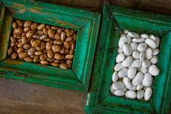 Kidney bean. In vintage frames Stock Photos